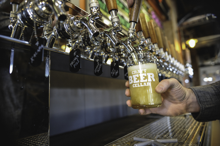 Beer geeks, unite! Craft Beer Cellar aims to be a haven for unique brews in  Grand Rapids