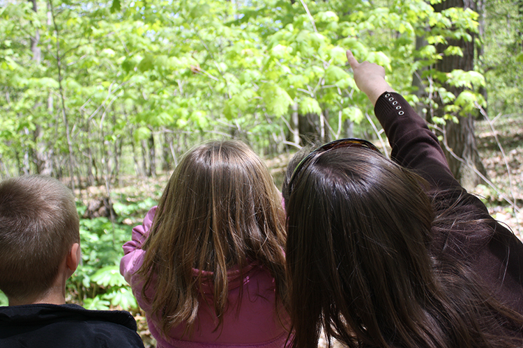 Tours at Blandford Nature Center educate children on the importance of natural vegetation.