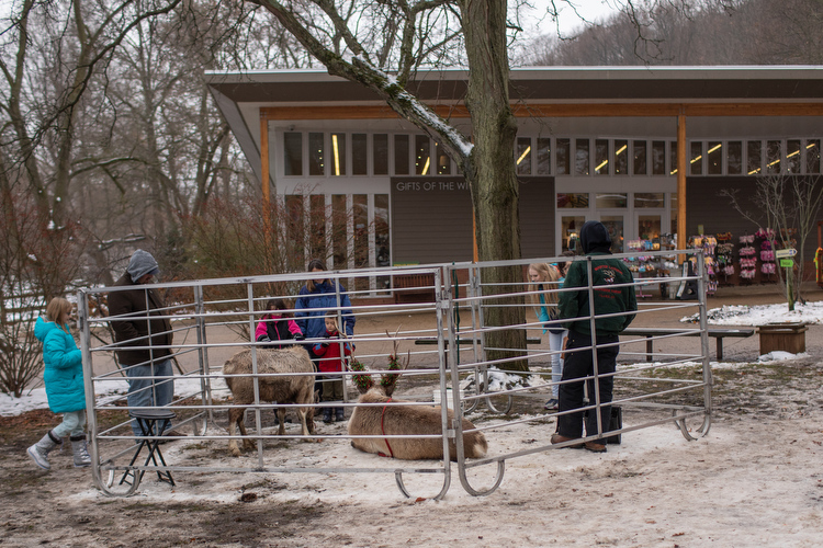 Kids check out reindeer at the entrance to the John Ball Zoo.