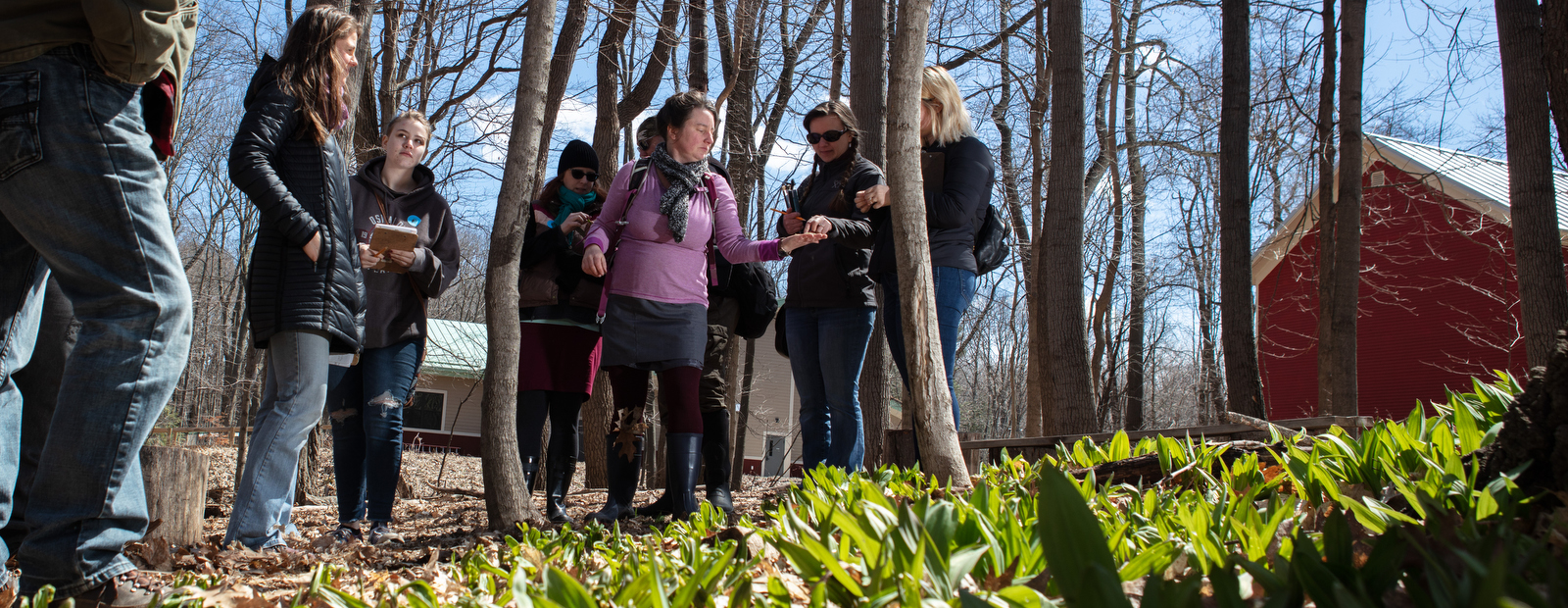 Blandford Nature Center welcomes spring with edible tours.  <span class='image-credits'>Adam Bird</span>