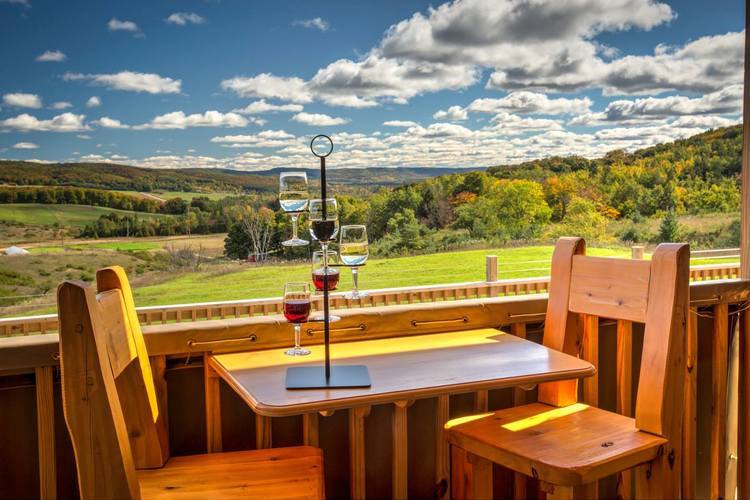 The view at Petoskey Farms Vineyard & Winery